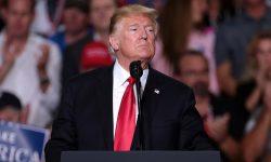 Donald Trump: Deshalb lacht Finnland über seinen Waldbrand-Kommentar